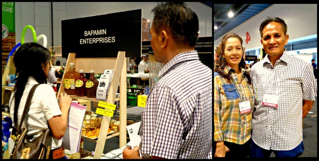 Bapamin Enterprises