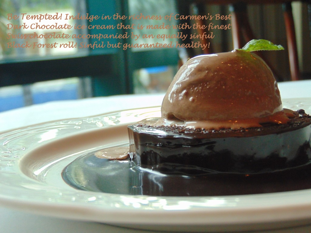 Carmen's Best Dark Chocolate ice cream , Swiss Chocolate,