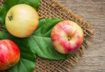 Sugar level ripe fruit - Food finds Asia