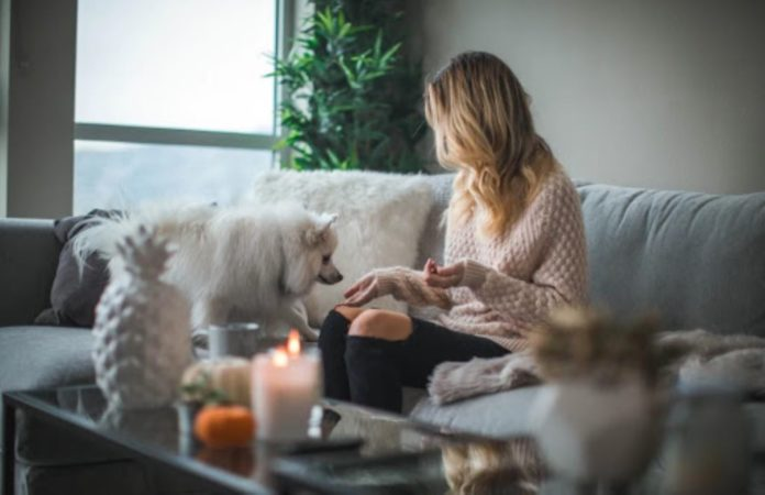The Basics of Creating a Cozy Home